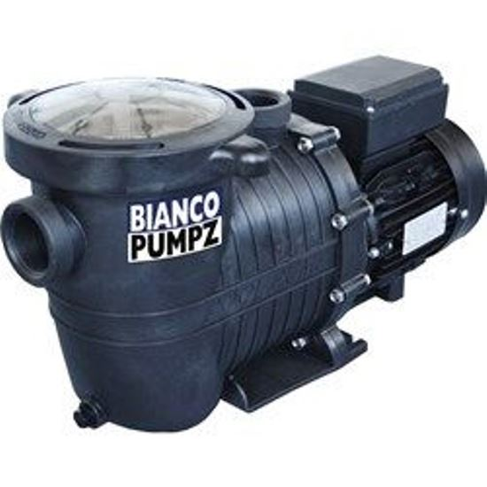 Bianco Pool Pumps